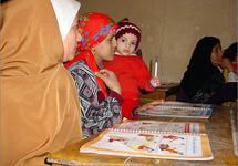 View details: Egypt Healthy Mother/Healthy Child Project