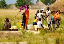 View details: Sudan Health Transformation Project (SHTP)