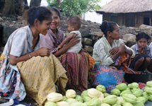 View details: Timor-Leste Financial Literacy for Women