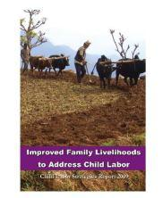 View details: Improved Family Livelihoods to Address Child Labor in Nepal: Strategies Report