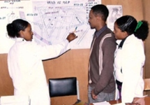 View details: Ethiopia Health Management Information System Strengthening Project