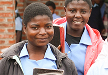 View details: Essential GBV Services and Prevention Project in Malawi