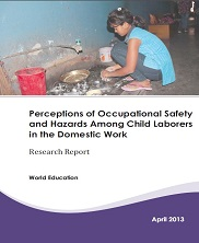 View details: Perceptions of Occupational Safety and Hazards Among Child Laborers in Domestic Work in Nepal