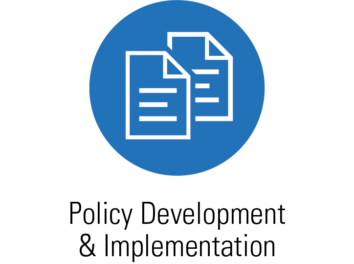 Services - Policy Development & Implementation