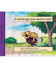 Download Portuguese version of this publication